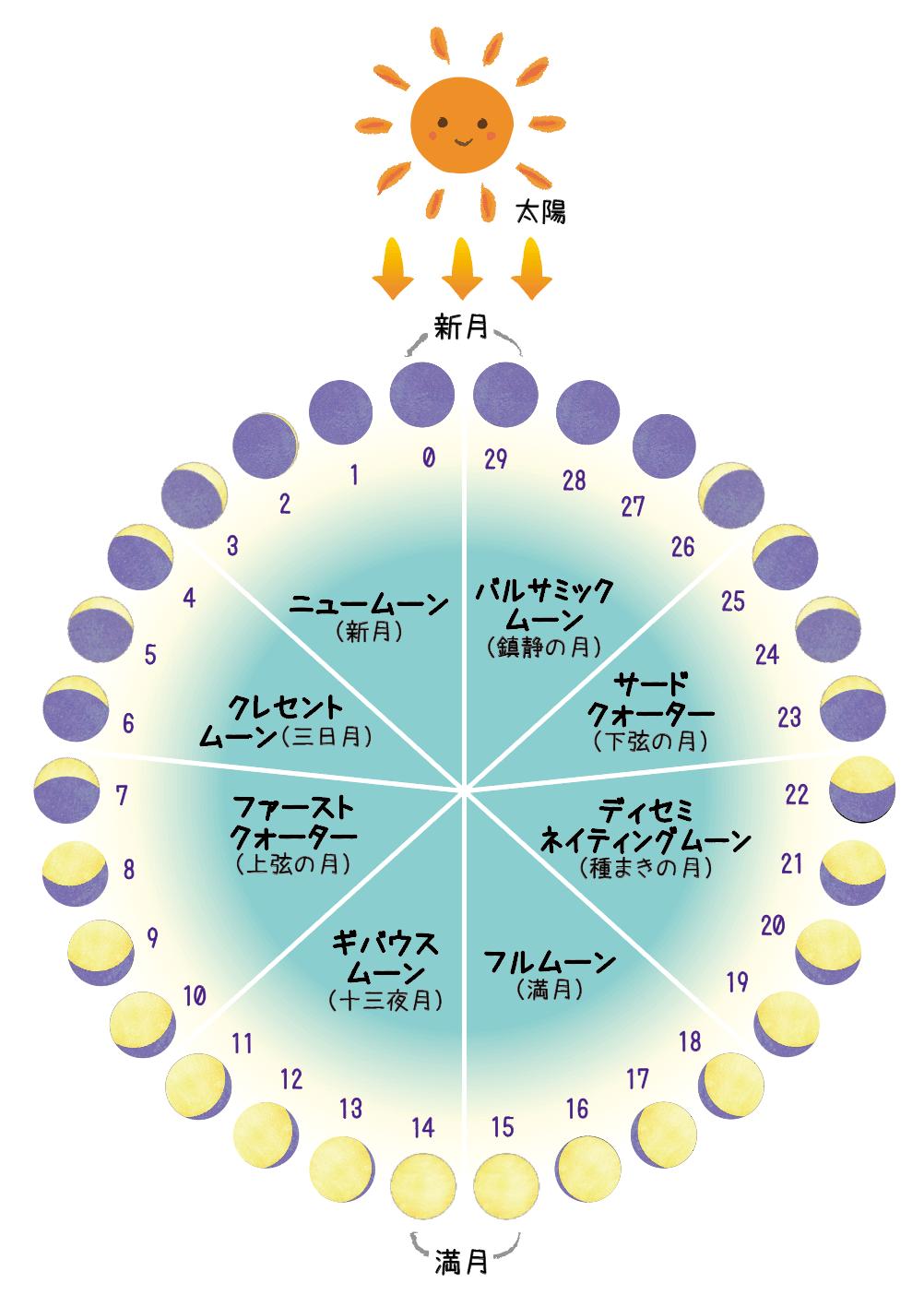 月相_8つの段階