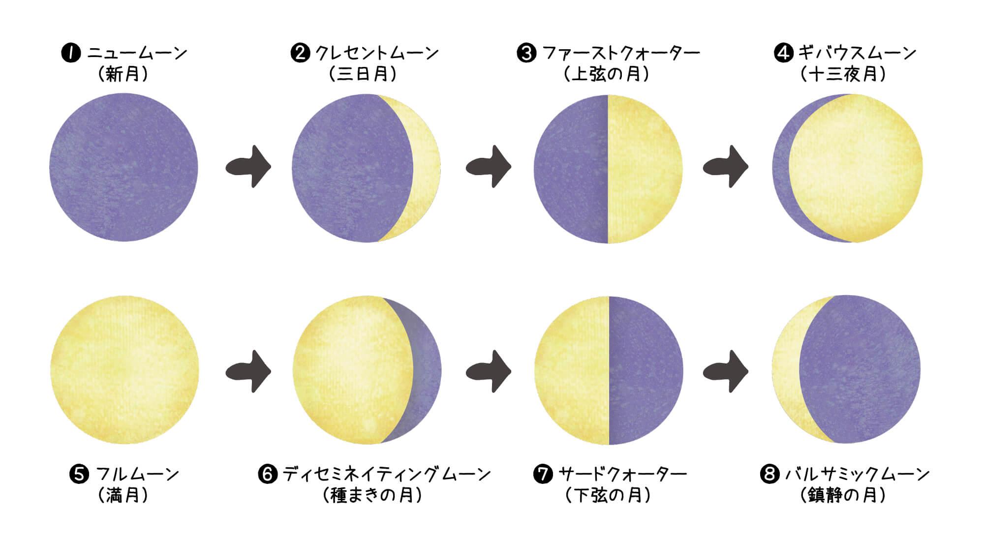 月相8段階